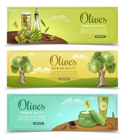 Conjunto de Banners de olivo
