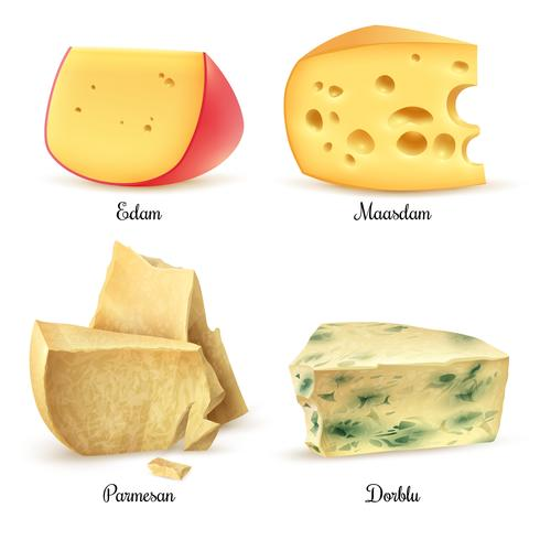 Quality Cheese 4 Realistic Images Set vector