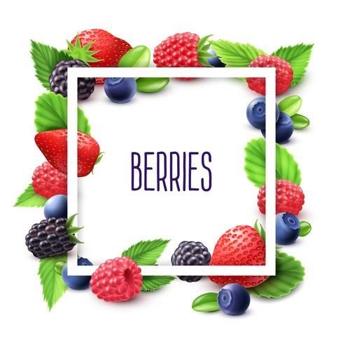 Berries And Frame Realistic Set