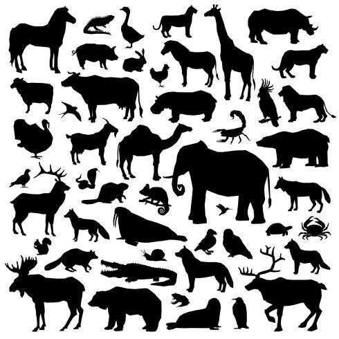 Conjunto Suilhouette Animales Grande vector