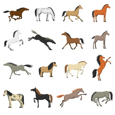 Best Horse Breeds Pictures Icons Set  vector