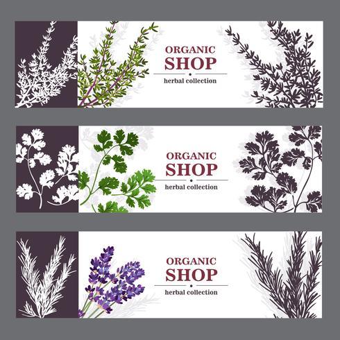 Bio-Shop-Banner mit Kräutern vektor