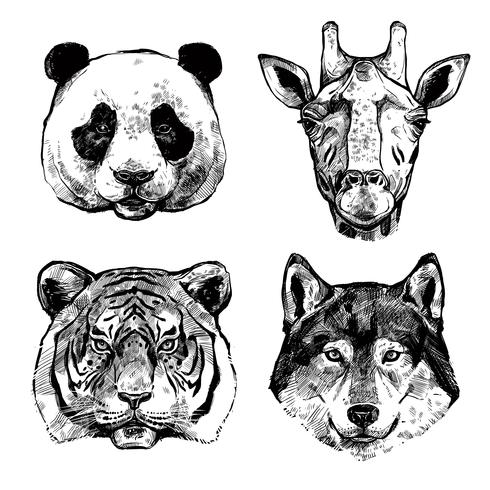 Hand Drawn Animals Portraits vector