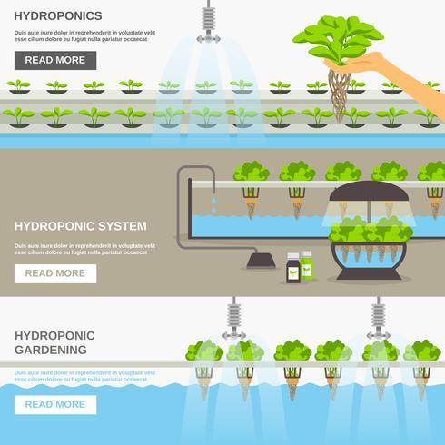 hydroponic system illustration