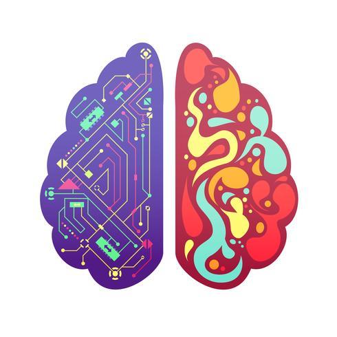 Höger Vänster Brainsymbolisk Färgbild vektor