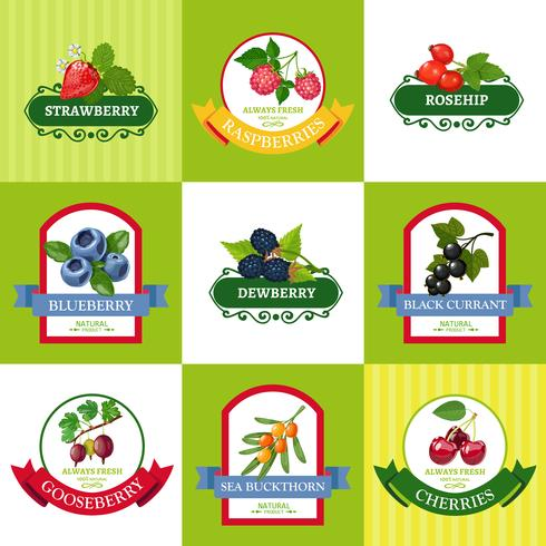 Fresh Berries Labels Flat Icons Set vector
