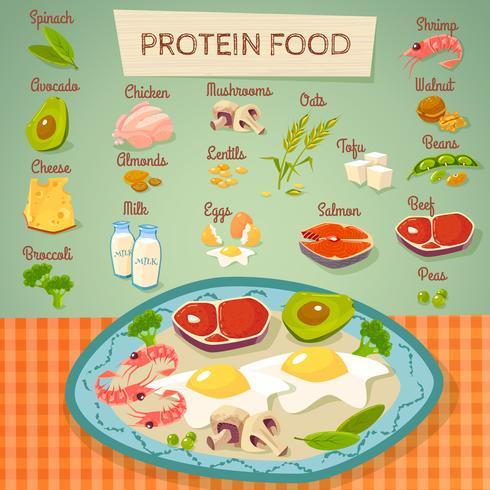 Coleção de alimentos crus e cozidos de proteína