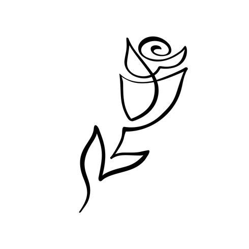 Concepto de flor rosa Línea continua mano dibujo vector caligráfico logo. Elemento de diseño floral de primavera escandinavo en estilo minimalista. en blanco y negro
