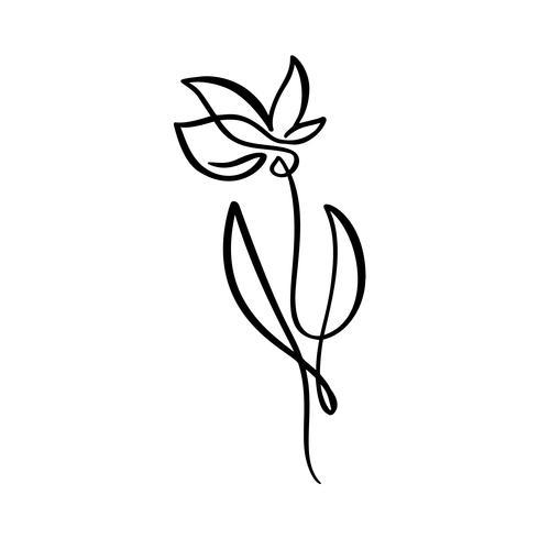 Línea continua mano dibujo caligráfico vector flor concepto logo belleza. Elemento de diseño floral de primavera escandinavo en estilo minimalista. en blanco y negro