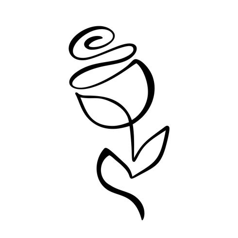 Rose flower concept. Continuous line hand drawing calligraphic vector logo. Scandinavian spring floral design element in minimal style. black and white