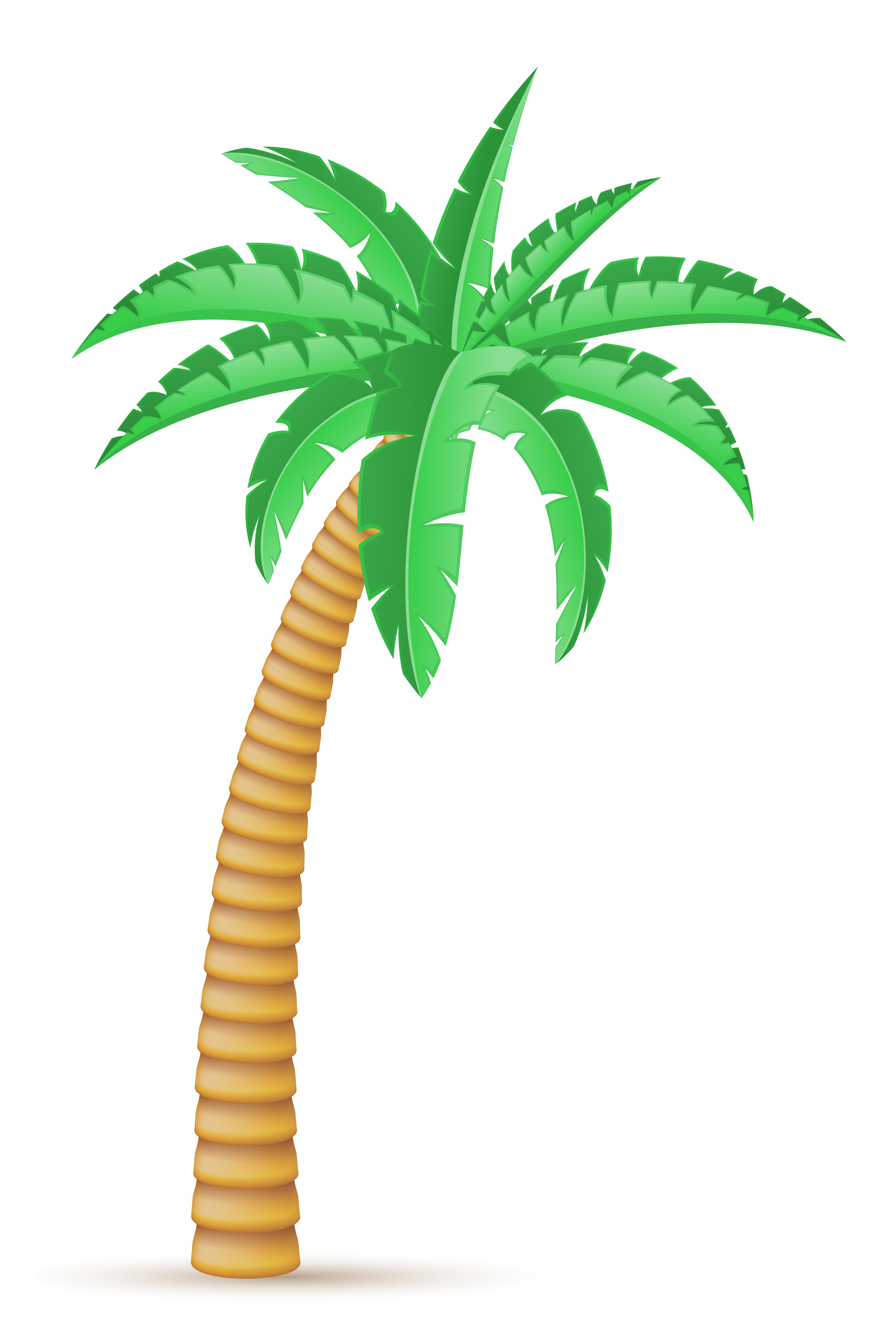 Vector Illustration Tree: Palm Tropical Tree Vector Illustration