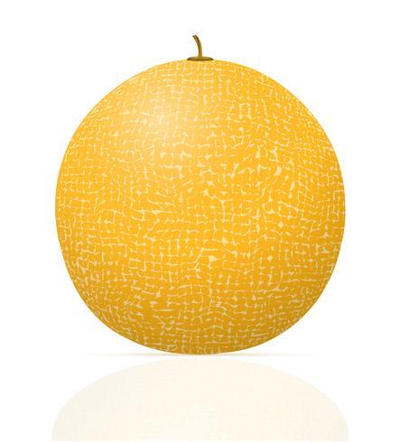 melone maturo succosa illustrazione vettoriale