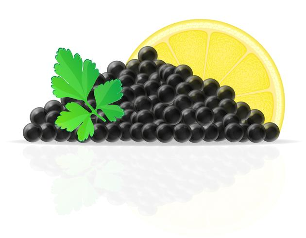 black caviar with lemon and parsley vector illustration