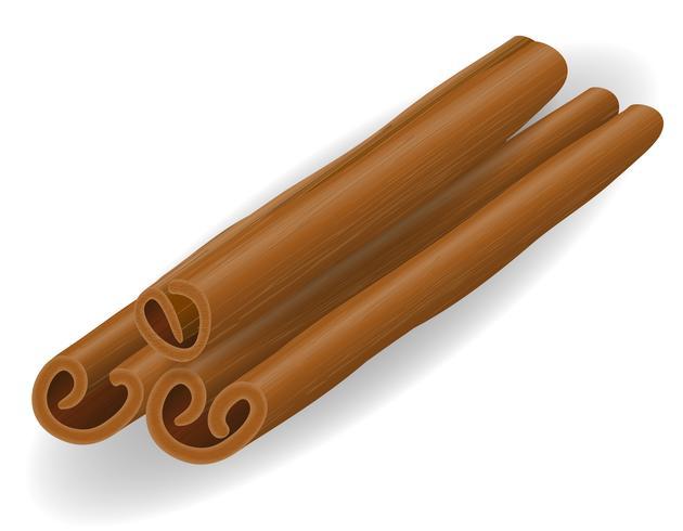 illustration vectorielle de bâton de cannelle