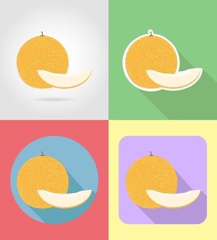 melon fruits flat set icons with the shadow vector illustration