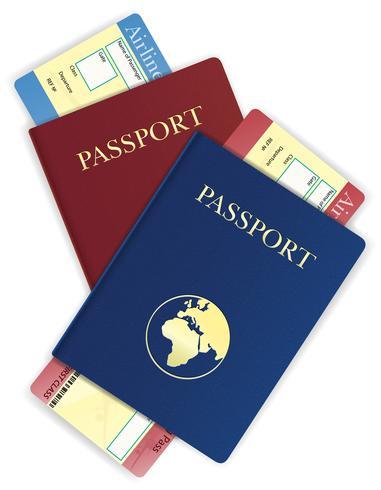 Ilustración de vector de pasaporte y boleto de avión