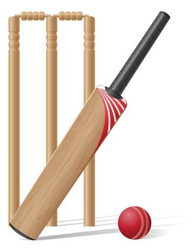 configurar equipo para ilustración de vector de cricket