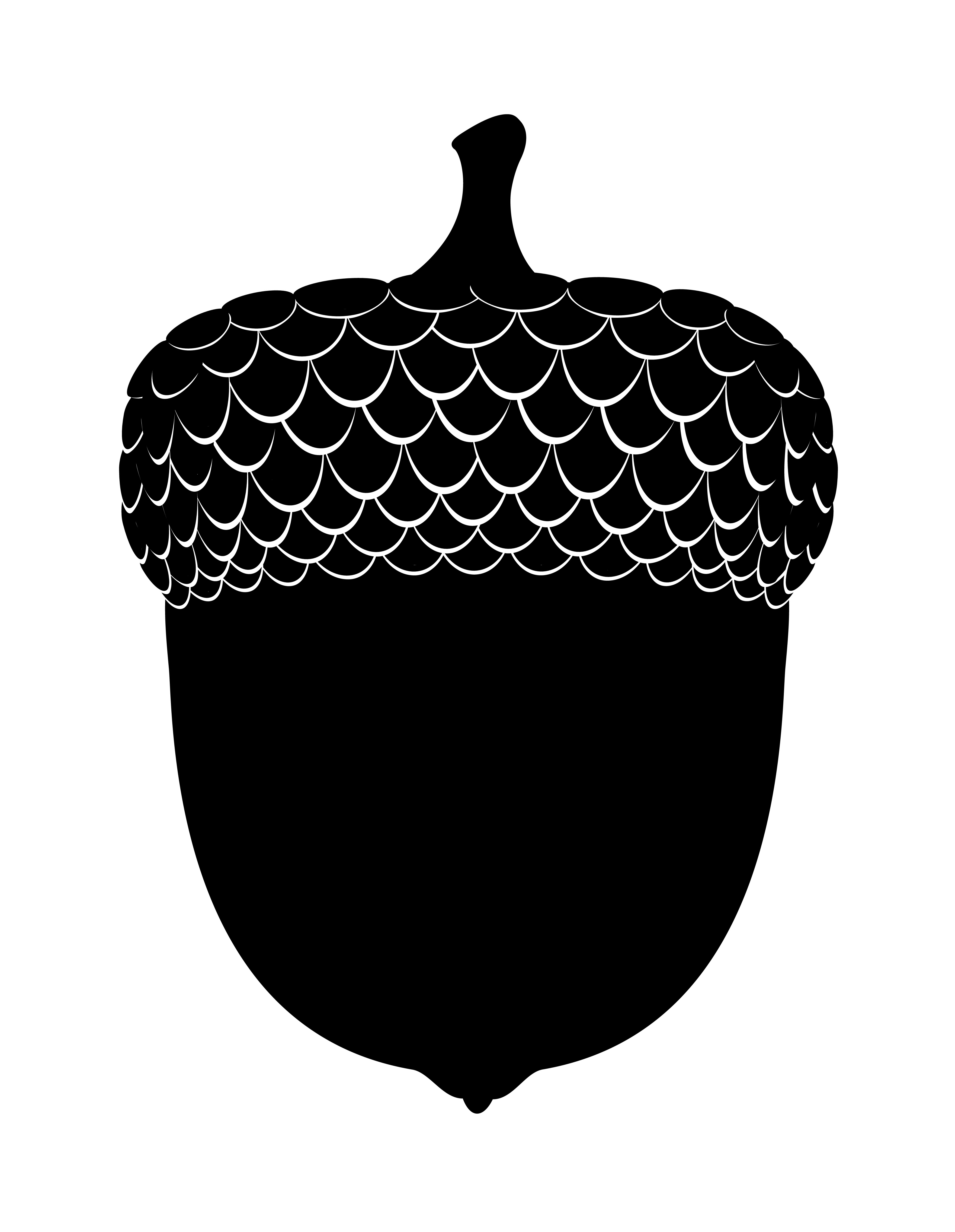 oak acorns black outline silhouette vector illustration ...