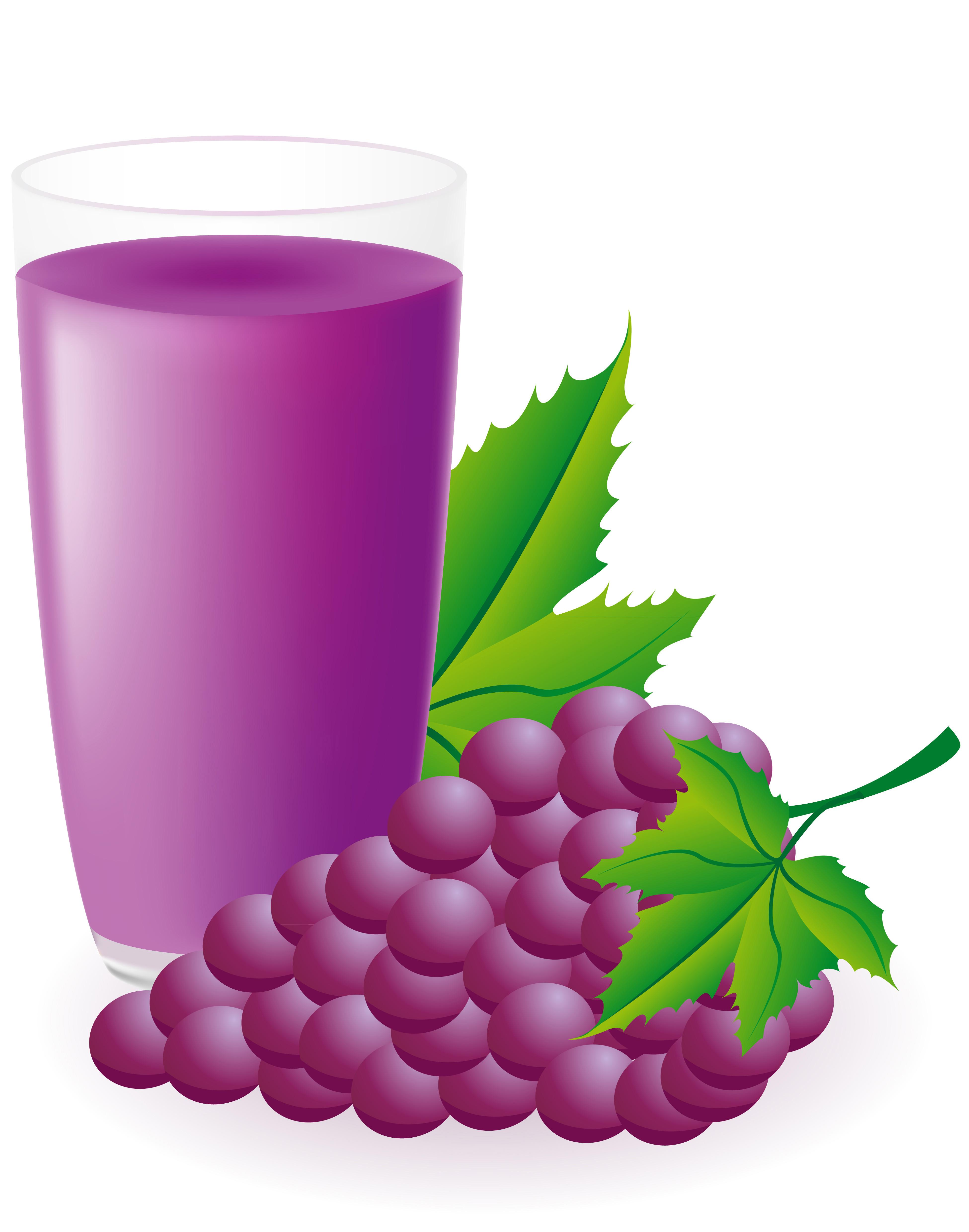 blue grape juice vector illustration - Download Free ... (3901 x 4961 Pixel)