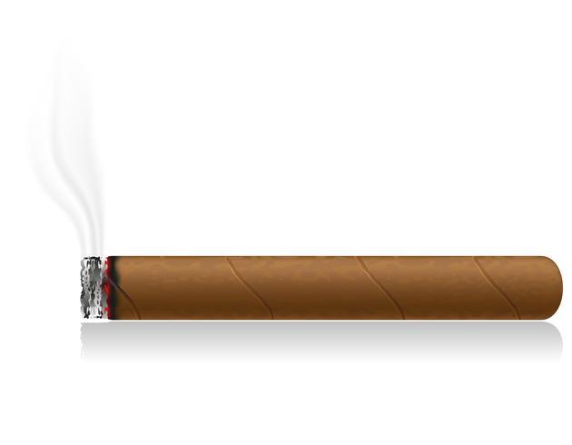 Ilustración de vector de cigarro ardiente