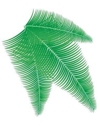 Ilustración de vector de rama de palma
