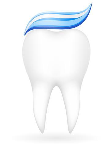 ilustración vectorial de diente vector