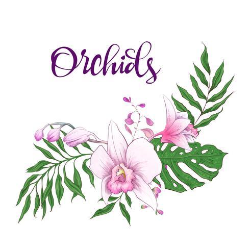 Cornice di design floreale. Orchidea, eucalipto, verde. Carta di nozze vettore
