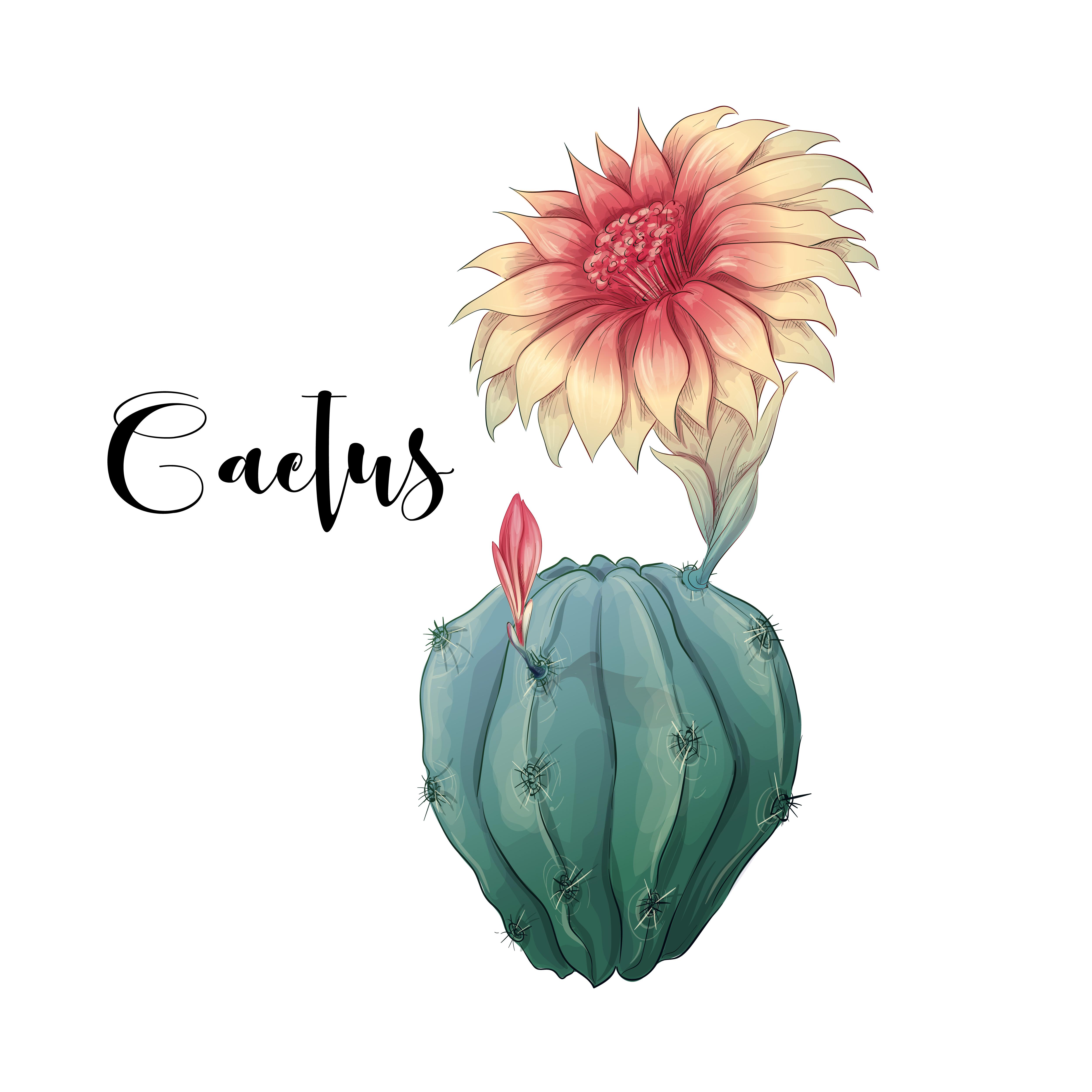 Hand Flower Illustration