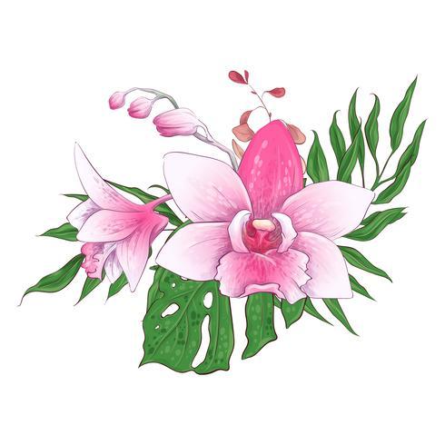 Bouquets de fleurs tropicales exotiques paphiopedilum orchidée fleurs vector design set