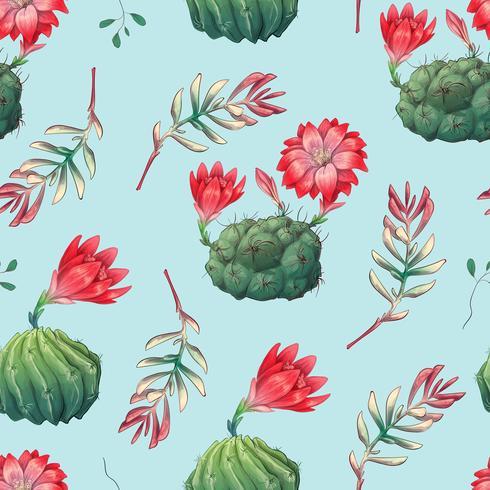 Hand getrokken decoratieve naadloze patroon met cactussen en vetplanten