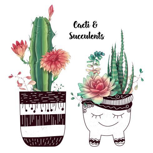 Scheda con set di cactus e piante grasse. Piante del deserto