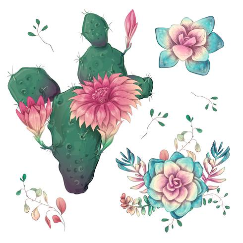 Suculentas. Mano de los cactus dibujada en un fondo blanco. Flores en el desierto. Dibujo vectorial de suculentas. vector