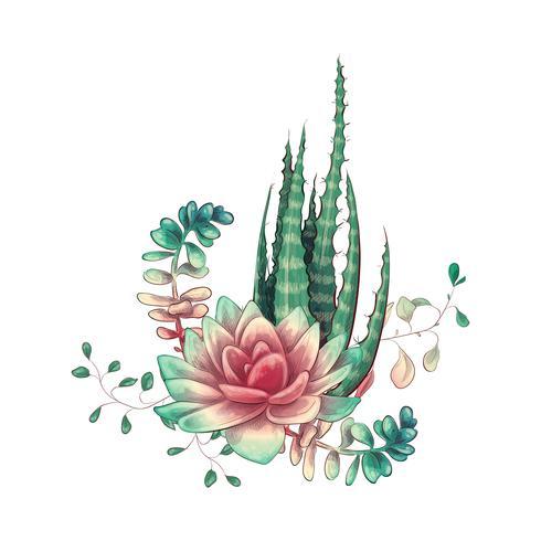 Tarjeta con cactus y conjunto de suculentas. Plantas del desierto.