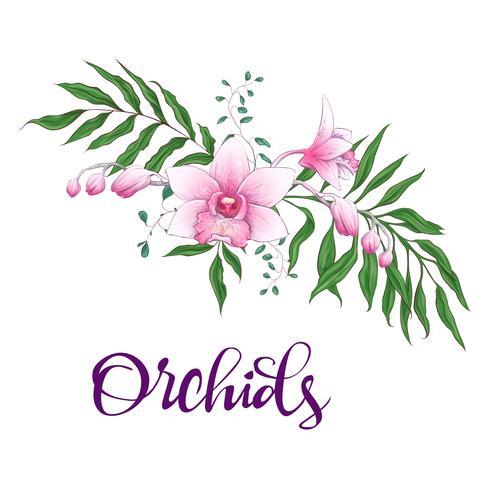 Floral design frame. Orchid, eucalyptus, greenery. Wedding card. vector