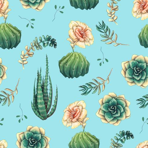 Dibujado a mano patrón sin costuras decorativas con cactus y suculentas vector