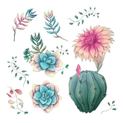 Suculentas. Mano de los cactus dibujada en un fondo blanco. Flores en el desierto. Dibujo vectorial de suculentas.
