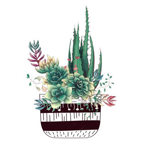 Cartão com conjunto de cactos e suculentas. Plantas do deserto.