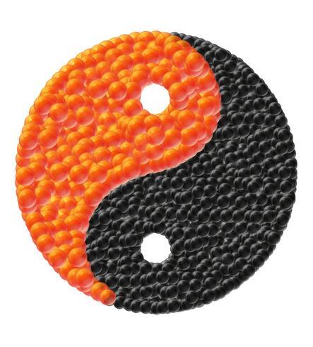 yin and yang made of caviar vector illustration
