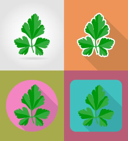 parsley vegetable flat icons with the shadow vector illustration