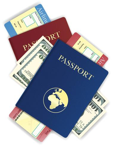 passport with money and airline ticket vector illustration