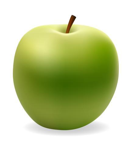 ilustración vectorial de manzana verde vector