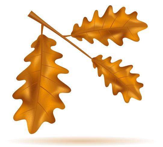 Ilustración de vector de hojas de roble otoño