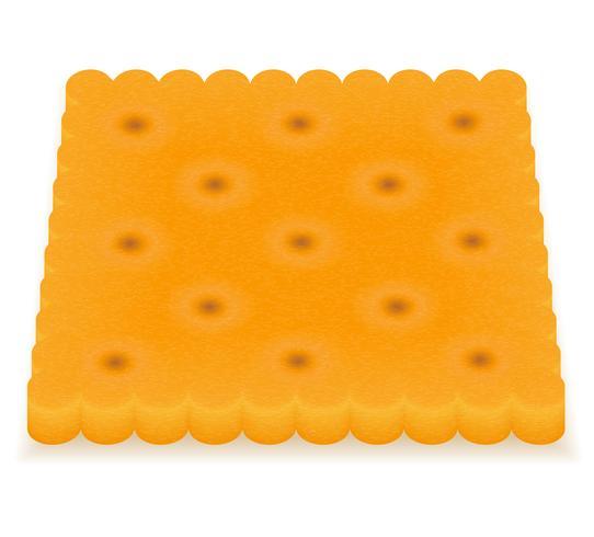 crispy biscuit cookie vector illustration