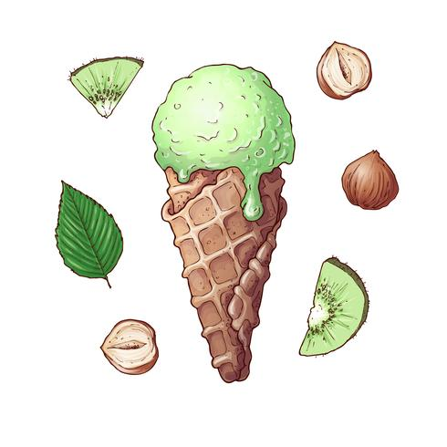 Set of kiwi nuts ice cream. Hand drawing. Vector illustration