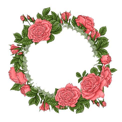 Marco de rosas de coral. Dibujo a mano ilustración vectorial vector