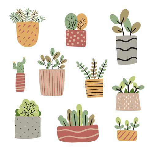 Plantas en macetas vector colección diseño