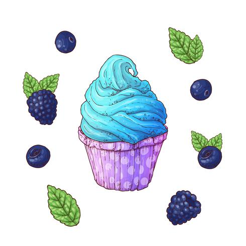 Set of blueberry cupcake vector illustrations