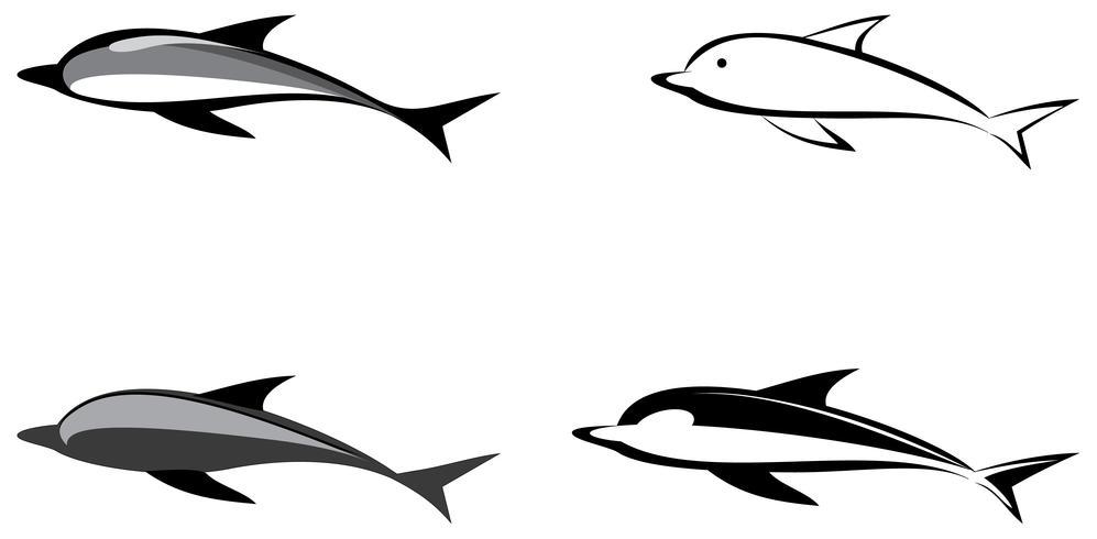Dolfijn - vectorillustratie