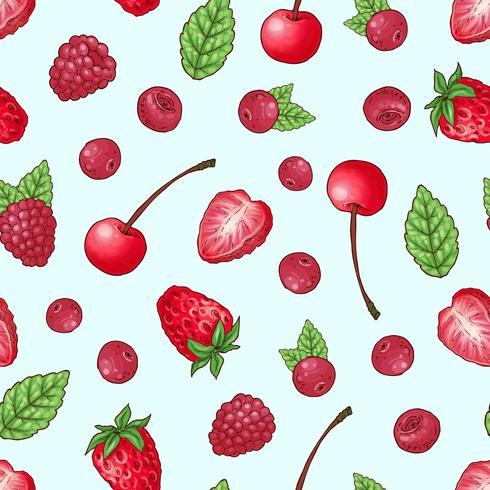 Framboesa de cereja morango padrão sem emenda. Mão, desenho, vetorial, ilustração