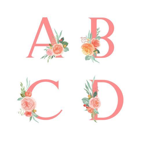 Alphabet rose ensemble floral collection, millésime de bouquets de fleurs de pivoines orange et orange, conception pour l'invitation de mariage, célébrer le mariage, illustration vectorielle de Merci carte décoration.